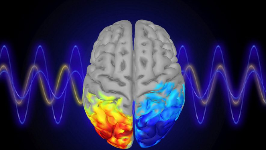 MIT Neuroscientists Demonstrate Controlling Attention With Brain Waves – SciTechDaily