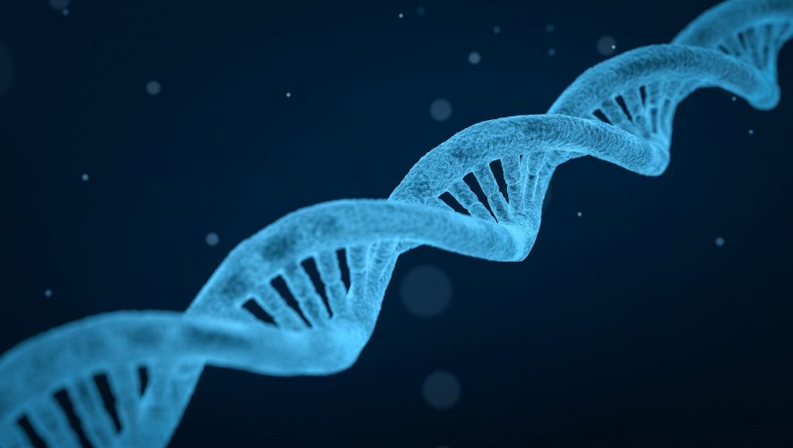 Largest study of its kind reveals that many psychiatric disorders arise from common genes – Medical Xpress