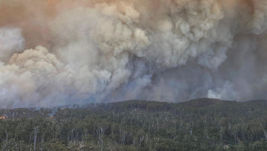 Wildfires Spared Many Australian Winemakers, But the Smoke Might Not